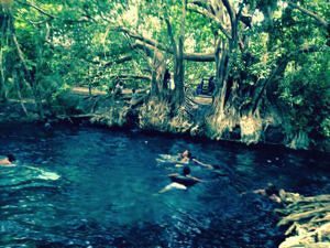 Rope swinging into the hot springs!