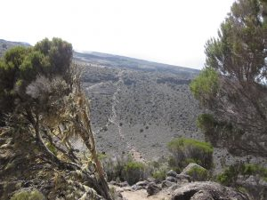 View across the ravine