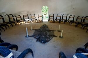 crocodile skin and horn chairs in a room