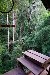 Stairs to get to the zip line
