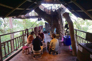 Living room area of the tree house