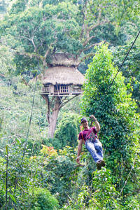 Zipping out of the tree house
