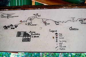 Map of all the tree houses