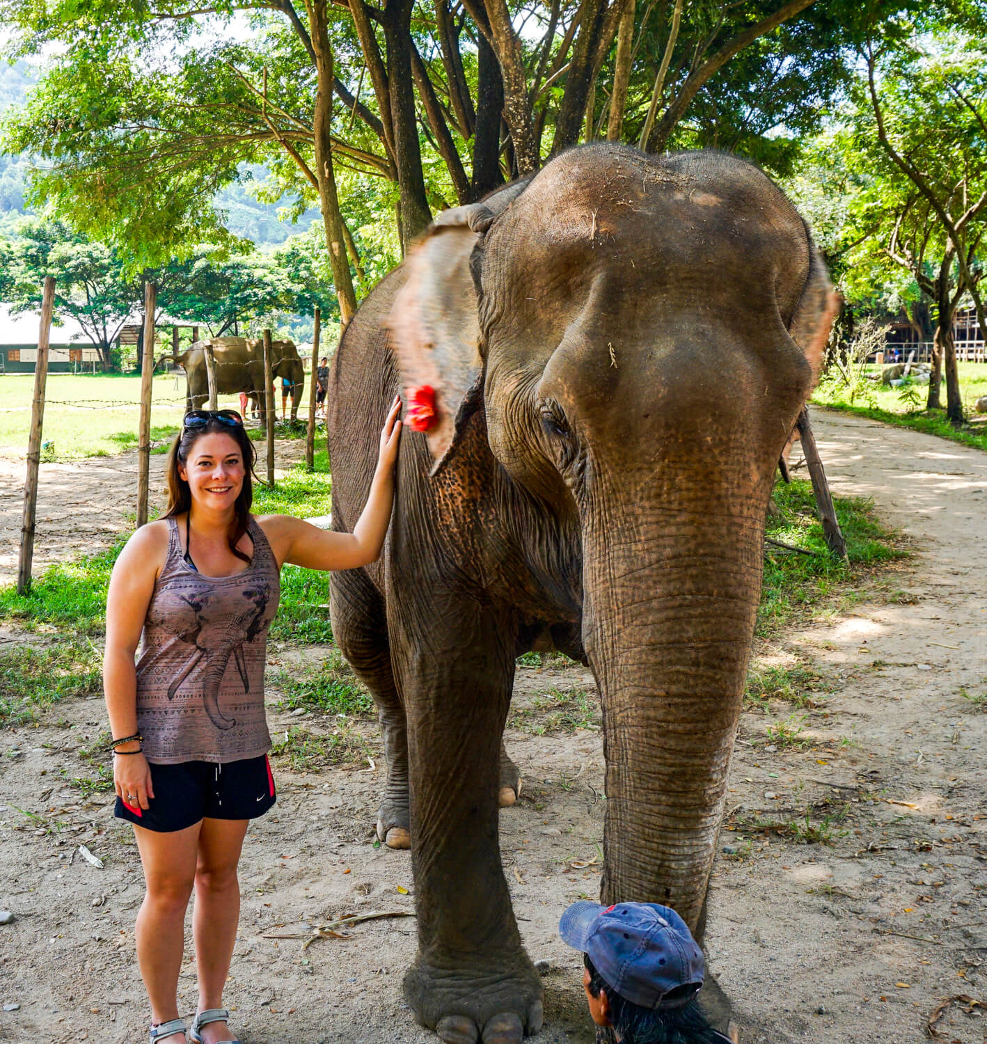 Jess taking a picture with an elephant