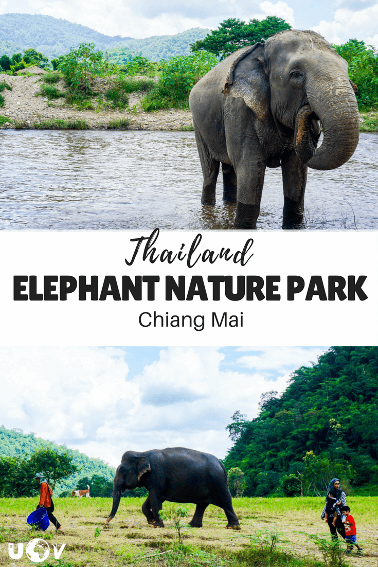 The Elephant Nature Park of Chiang Mai, Thailand